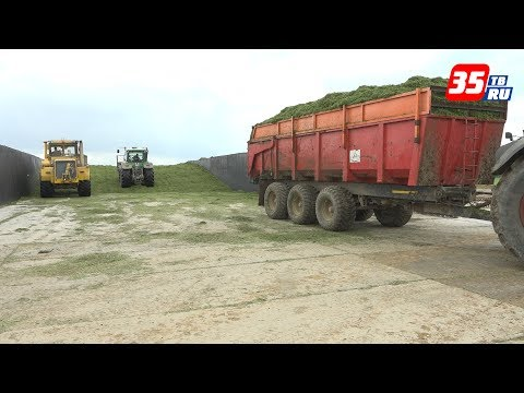 В Вологодском районе оценили ситуацию, сложившуюся в сельском хозяйстве из-за непогоды