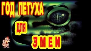 ГОД ПЕТУХА ДЛЯ ЗМЕИ. ГОРОСКОП 2017 ЗМЕЯ