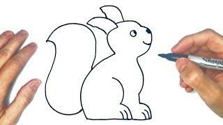 Como dibujar una Ardilla de Bosque YouTube Videos