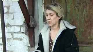 Собаки загрызли ребёнка в Ростовской области