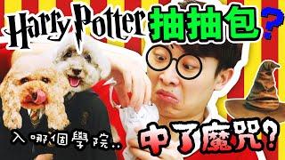 【❤️是愛啊哈利~】抽「哈利波特抽抽包」,竟慘中魔咒😱!竟然抽到了……?分類帽測試?(中字)   Harry Potter盲盒  
