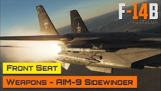 DCS World - F-14 Tomcat - Front Seat - Weapons - AIM-9 Sidewinder