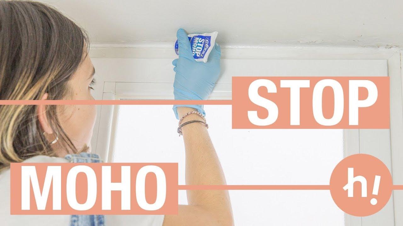 C mo limpiar el moho de la ducha y el resto del ba o - Limpiar azulejos bano moho ...