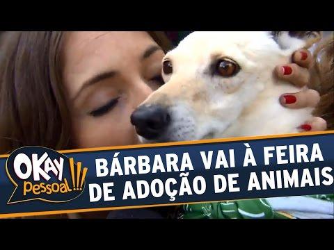 Okay Pessoal!!! (17/05/16) - Bárbara Koboldt vai à feira de adoção de cachorrinhos