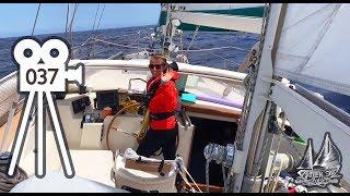 Amel Super Maramu 53ft A Tour Of Our Liveaboard Sailing Yacht #37