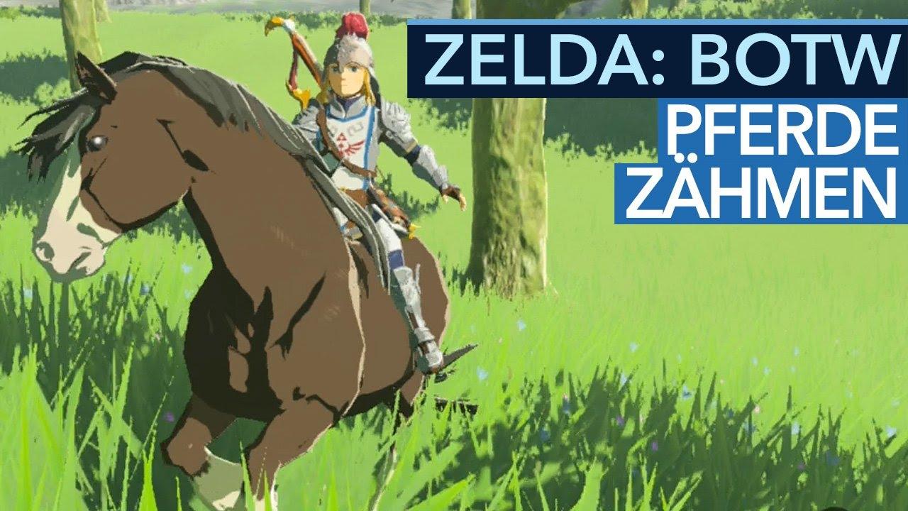 Zelda Breath Of The Wild Pferde