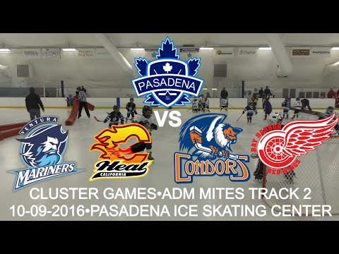 Pasadena Maple Leafs vs Mariners, Heat, Condors, Red Wings. ADM Mites Track 2 (10-09-2016)