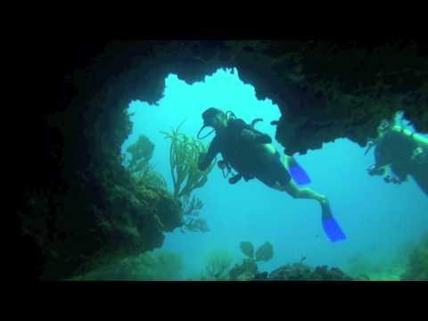Week 50, 2010 ( Trailer ) Ocean Explorers Dive Center