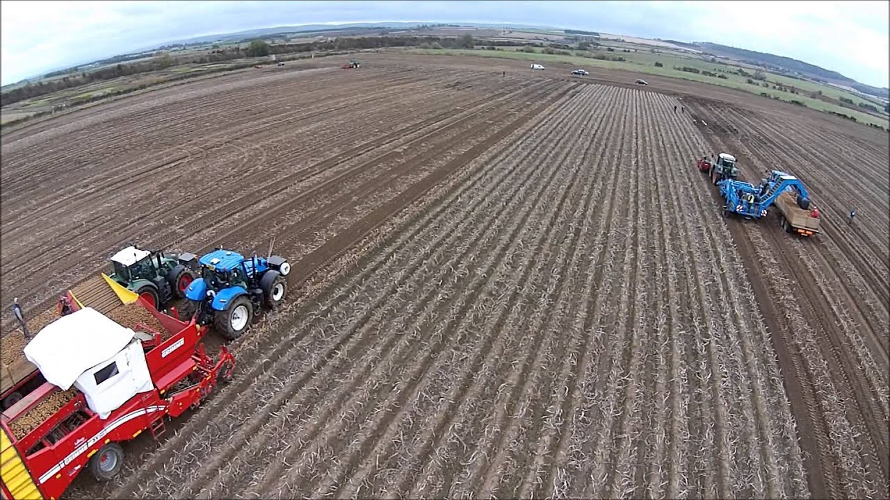 Uk Potato Harvest 14 With Tolmac Front Harvesters
