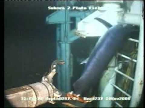 Swordfish stuck in SubSea Well head video from Marlin Atwood Eagle
