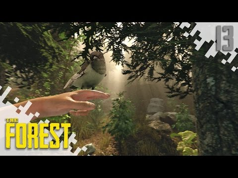 The Forest (Multiplayer S2) - Gun Parts! - EP13
