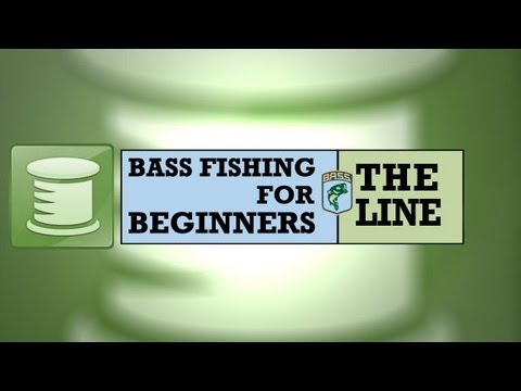 Bass Fishing for Beginners:The Line