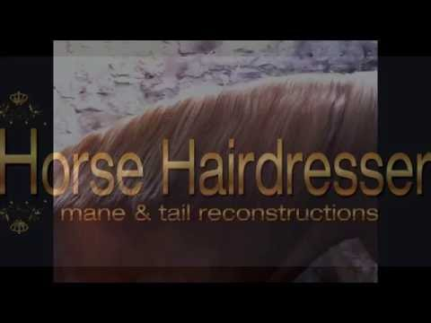 Mane and tail reconstructions and training - horse hairdresser international training academy