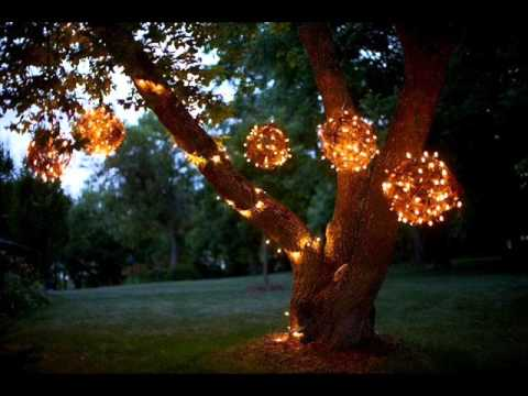 Decorative Outdoor Lights For Trees