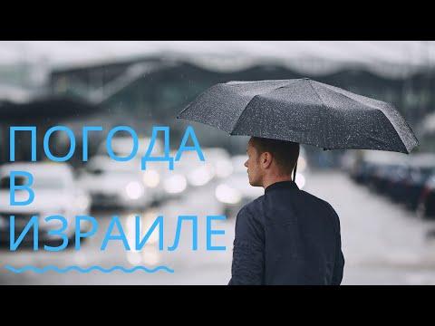 ✅ Погода в