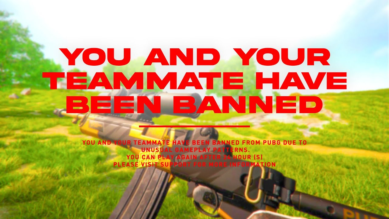 We both got BANNED for this game of pubg…