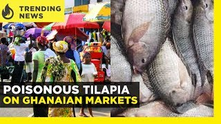 Ghana News Today: Chaotic Riot by KNUST Students / Poisonous Tilapia on Ghanaian Markets |Yen.com.gh