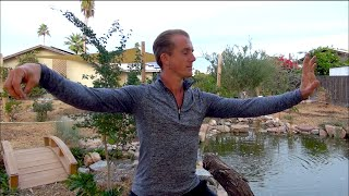 Yang Style Tai Chi for Beginners - Section 1