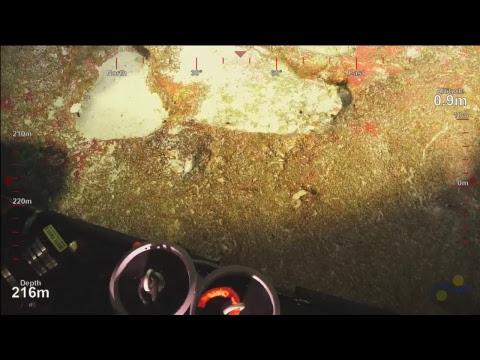 ROV SuBastian Dive 076- Deep Sea Corals of PIPA