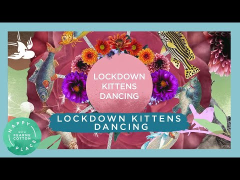 Fearne Cotton, Amelia Warner and GABA feat. Helen Mirren – Lockdown Kittens Dancing (Lyric Video)