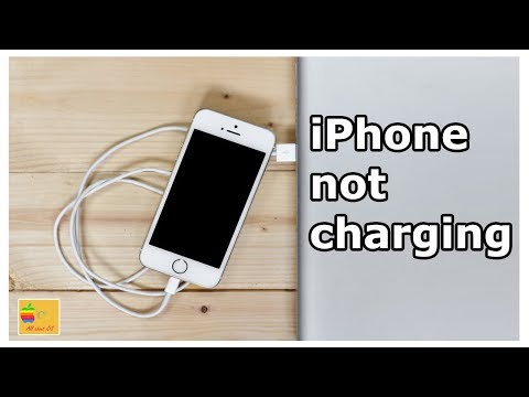 This may be the reason why your iPhone is not charging