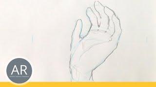 Hände zeichnen - Tutorial Hand etwas haltend