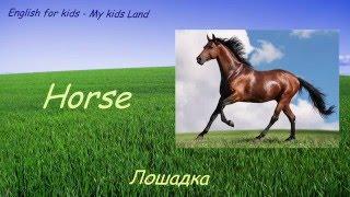 Животные на ферме. Английский язык для детей.