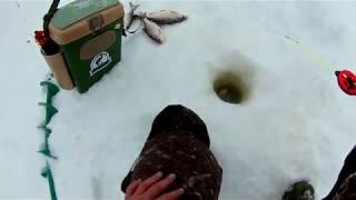 Да кто ж там крючки разгибает.отличная рыбалка на безмотылку .часть первая.