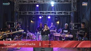 Terpesona - Intan Chacha | Duta Nirwana Music (Live Cover)