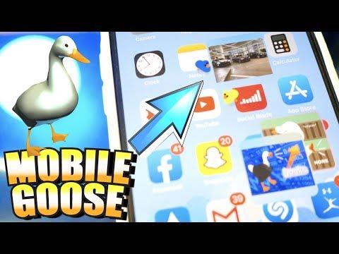 There's A GOOSE On My IPhone! (MobileGoose Meme Tweak Review) - IOS 13 FREE Jailbreak/Cydia Tweaks