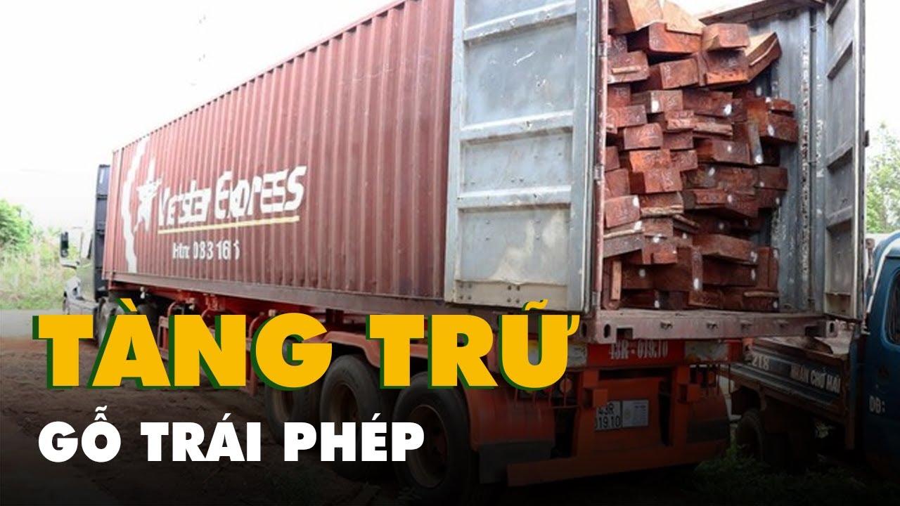 Phát hiện vụ vận chuyển, tàng trữ gỗ trái phép quy mô lớn