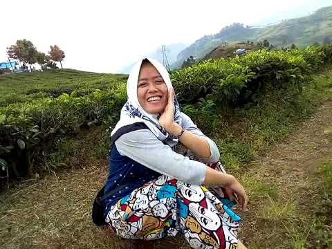 My trip my adventure ... Indonesia indah lohhhhh