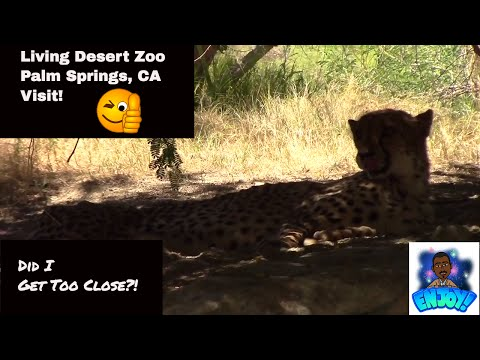 Living Desert Zoo in Palm Springs - Did I Get Too Close?!