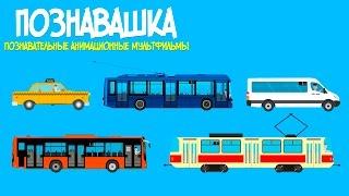 Развивающий мультик для детей. Городской транспорт: Такси, Маршрутка, Автобус, Троллейбус, Трамвай.