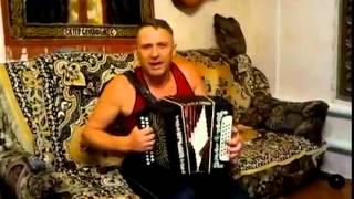Ой Калина,играет и поет А.Борисов.Песня под гармонь