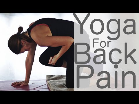 Yoga for Back  Pain With Fightmaster Yoga