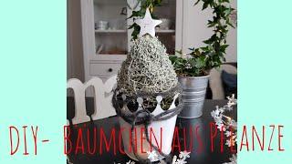 Bäumchen DIY /zum verschenken/ schnelle Idee /Floristik/ Weihnachten