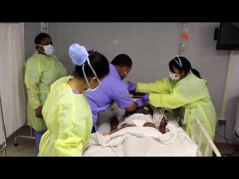 Cuidados POST MORTEM - Antilles te educa