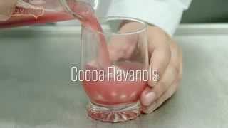 Cocoa Flavanols Improve Cardiovascular Function