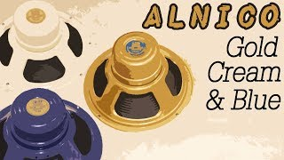 Celestion Alnico Shootout: Gold, Cream & Blue (in Dr Z DB4)