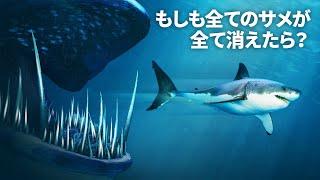 世界中のサメが突然姿を消したら?