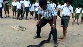 Ajgar Handling Kumbhavade Highschool