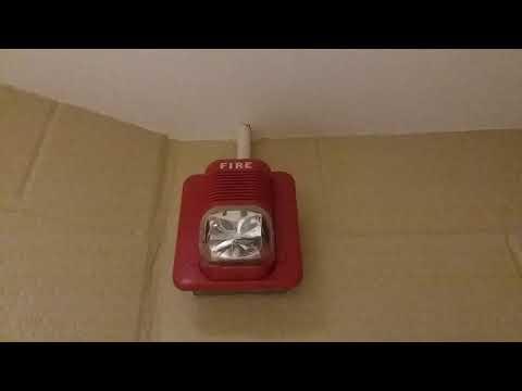 Fire Alarm Horn System Senor and Fall Hamilton Elementary School