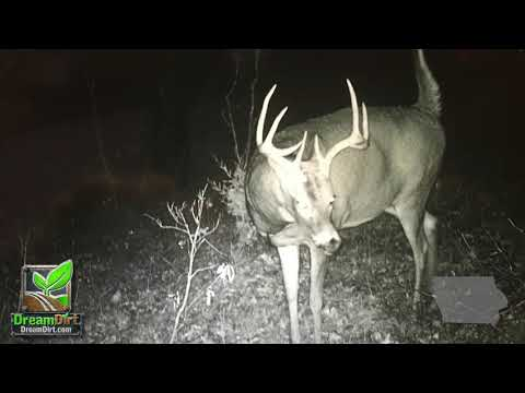 Iowa Hunting Land Auction Monroe County Iowa