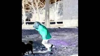 Девочка с собакой танцует