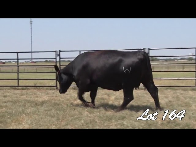 Pollard Farms Lot 164