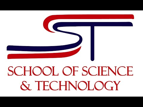 school of science and technology houston