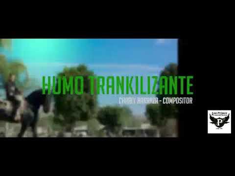 Hijos De Leyva - Humo Tranquilizante (Video Official) 2018
