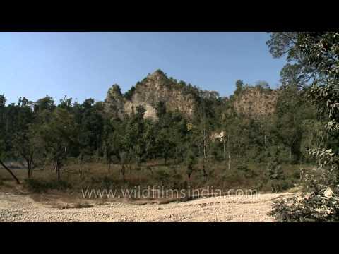 Shivalik hills in Rajaji National Park