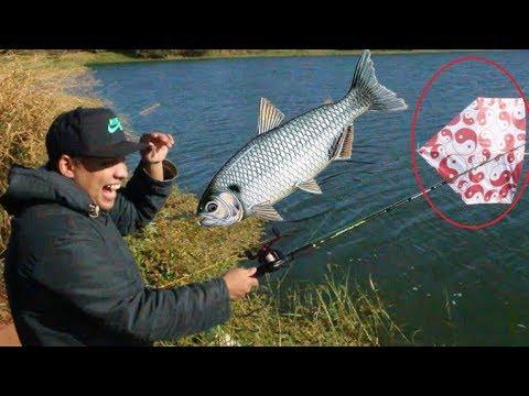 Pescaria com Pipa! só na fisgada